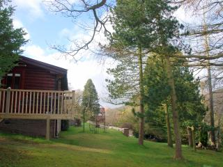 Log Chalet/amenities close/amazing views/sleeps 2 - Church Stretton vacation rentals