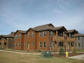 Newer 3 bed 2 bath condo - Driggs vacation rentals