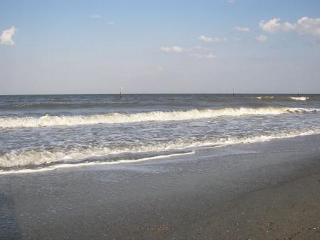 Relax Inn - Georgia Coast vacation rentals