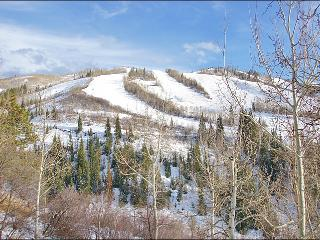 Ski In Ski Out, Remodeled 2008 - Great Slope View, Easy Access (5295) - Steamboat Springs vacation rentals