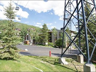 Great Value & Location - Updated & Remodeled (4616) - Steamboat Springs vacation rentals
