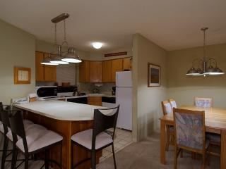 1 Bedroom, 2 Bathroom House in Breckenridge  (10B1) - Breckenridge vacation rentals