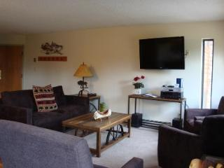 1 Bedroom, 2 Bathroom House in Breckenridge  (03B1) - Breckenridge vacation rentals