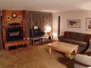 2 Bedroom, 2 Bathroom House in Breckenridge  (08E) - Breckenridge vacation rentals