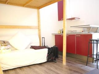 Cosy Studio for 3 guests on Rue Lacépède Apt 895 - Paris vacation rentals