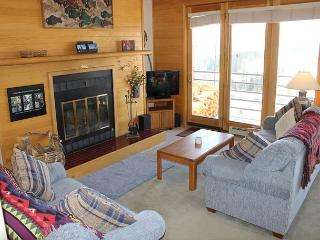 TR524 Ideal Condo w/Wifi, Clubhouse, Mountain Views, Fireplace - Silverthorne vacation rentals