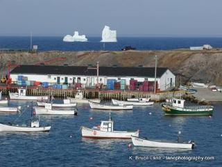 On the Ocean- Whale watch from your back deck - Newfoundland and Labrador vacation rentals