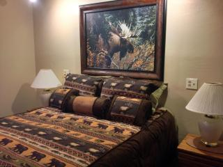 Alpine West Apt -nxt to Yellowstone- Fall Specials - West Yellowstone vacation rentals
