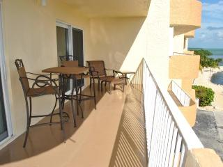 Sea Gulls Condo - Unit 406 - Islamorada vacation rentals