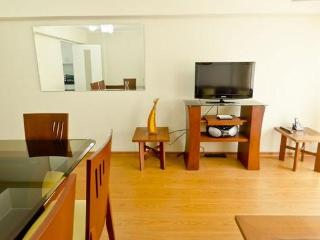 Brand New 2 Bedroom Apt in Heart of Miraflores - Miraflores vacation rentals