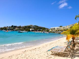 PERFECT 5 STAR REVIEWS!!! - Saint Thomas vacation rentals