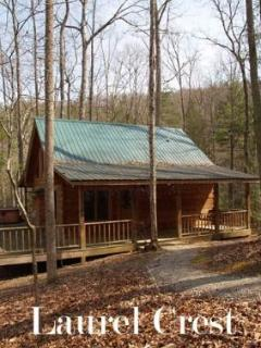 Laurel Crest-secluded 2 bedroom cabin with hottub - Townsend vacation rentals