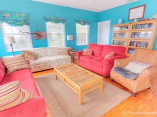 Villa Villekula Beach House, 4 bedrooms, secluded beach, HDTVs - Saint Augustine vacation rentals