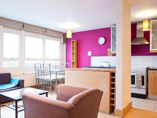 London Docklands Serviced Apartment With RiverView - London vacation rentals