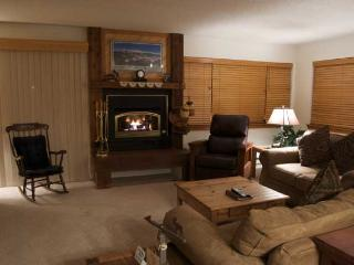 1 Bedroom, 2 Bathroom House in Breckenridge  (01D1) - Breckenridge vacation rentals