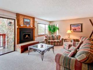 1 Bedroom, 2 Bathroom House in Breckenridge  (08A1) - Breckenridge vacation rentals
