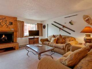 1 Bedroom, 2 Bathroom House in Breckenridge  (04B1) - Breckenridge vacation rentals