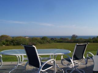 MV - Aquinnah - Expansive Ocean Views  2014 - Aquinnah vacation rentals