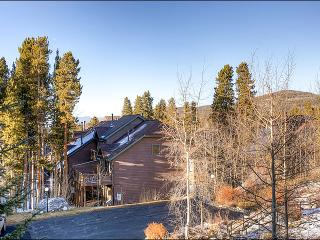 Elegant & Stylish Condo - Magnificent Finishes Throughout (13253) - Breckenridge vacation rentals