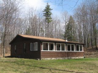Hunter's View Vacation Rental - Finger Lakes vacation rentals