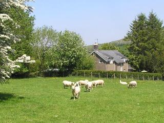 Farm cottage sea mountains Snowdonia Gwynedd - Snowdonia National Park Area vacation rentals