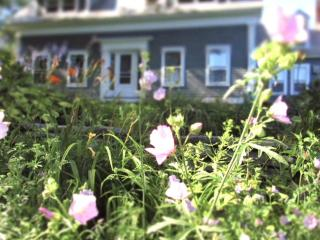 Charming Vt. Farmhouse with spectacular mt. views - Londonderry vacation rentals