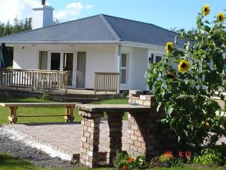 3 bedroom home  near the historic town of Trim - County Meath vacation rentals