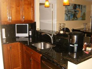 Amazing Casa Del Mar Condo - Saint Petersburg vacation rentals