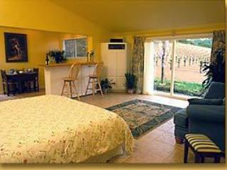 Zinscape - Healdsburg vacation rentals
