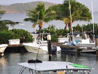 St Thomas Sapphire Village Marina Studio Condo - Red Hook vacation rentals