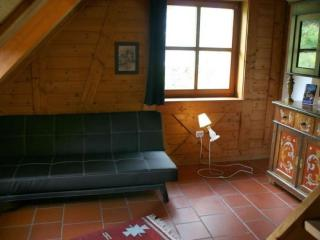 Vacation Apartment in Triberg im Schwarzwald - 538 sqft, affordable, friendly, quiet (# 2502) - Triberg vacation rentals