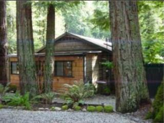 3 Bedroom Cabin In Redwoods of Boulder Creek CA - Central Coast vacation rentals