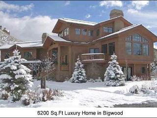 Luxury Home - Separate Apartment Optional (1112) - Ketchum vacation rentals