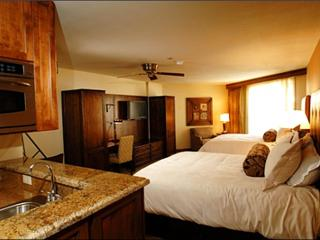 Stunning Studio Unit - Easy Access to the Town Shuttle (1101) - Crested Butte vacation rentals