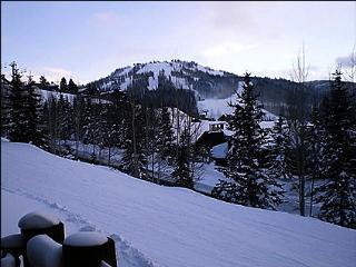 Beautiful Hillside Condo - Fantastic Views (24584) - Park City vacation rentals
