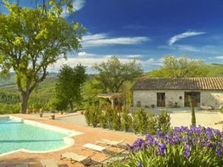 20%dsc. Luxury villa 10, priv.pool, stunning views - Tuscany vacation rentals