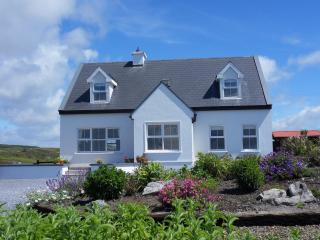 The Wildberry Cottage panoramic views of ocean - County Clare vacation rentals