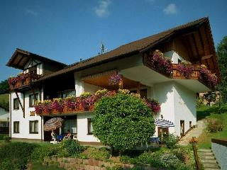 Vacation Apartment in Beerfelden - comfortable, relaxing (# 2511) - Beerfelden vacation rentals