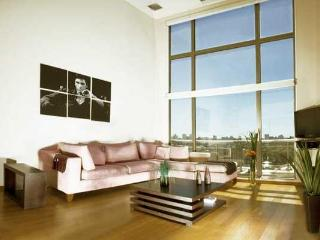 Luxury two-bedroom penthouse P.Hollywood-hum0 - Buenos Aires vacation rentals