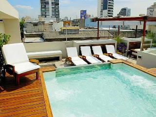 Amazing luxury house in Palermo Soho - Lavalleja - Buenos Aires vacation rentals