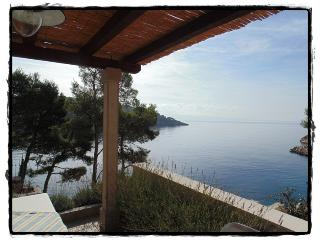 Apartment BILI Osibova - Brac vacation rentals