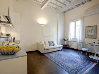 Blue-Sky Suite lovely apartm. front Medici Chapels - Florence vacation rentals