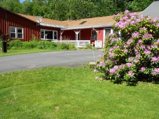 Country Getaway w/a Dash of Panache Welcomes Pets! - Charlemont vacation rentals