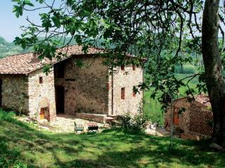 BOTTINO - Lucca vacation rentals