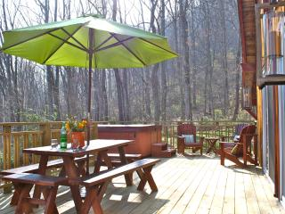 Hip Little Cabin on the Hill - Fantastic Location - Swannanoa vacation rentals