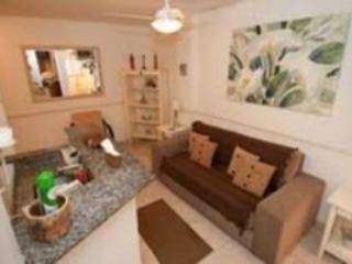Nice, Modern 1 Bedroom Apartment in Copacabana - Copacabana vacation rentals