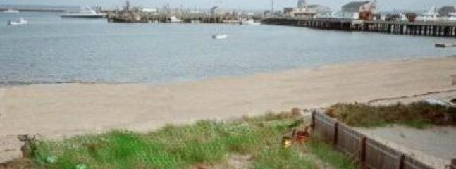 View from the Deck - Center of Town 3 Bedroom Beachfront - Provincetown - rentals