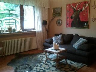 Vacation Apartment in Essen - 646 sqft, comfortable, WiFi (# 2533) - Essen vacation rentals