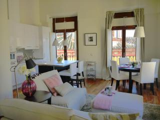 Attic duplex with a private terrace in the centre - Seville vacation rentals