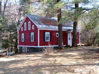 Berkshire Gorge House - Berkshire Gorge House - New Ashford - rentals